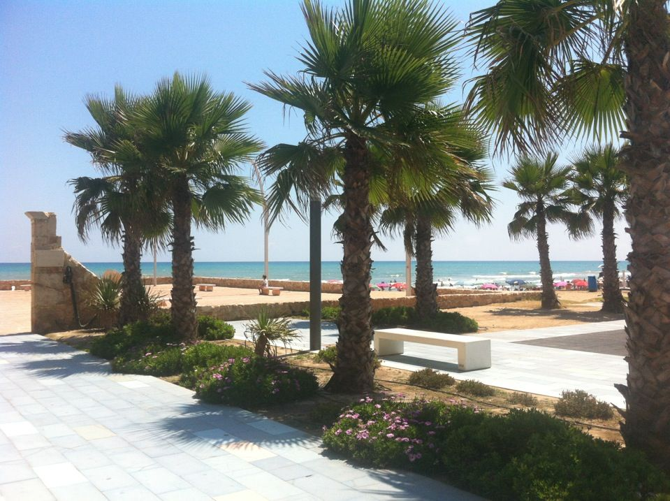 Playa Torrelamata La Mata Beach Beach Fun Spanish Towns