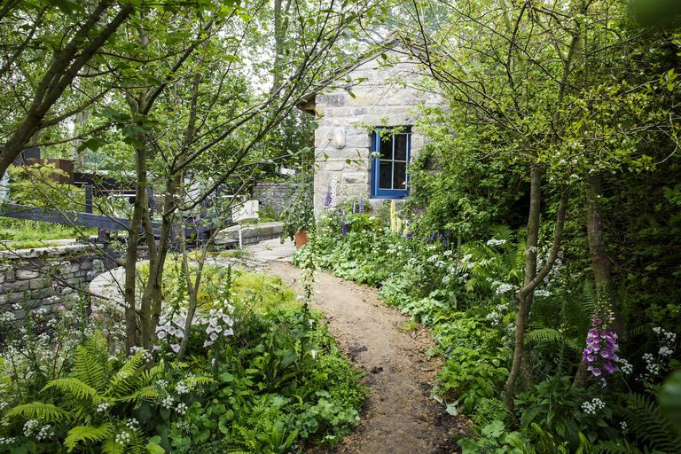 Rhs Chelsea The Welcome To Yorkshire Garden Wins Gold With