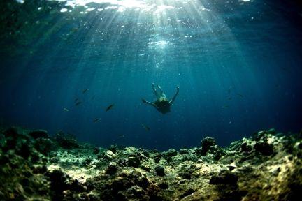 Modern day mermaid Frankie Harrer, shot by Morgan Maassen for FOAM online.