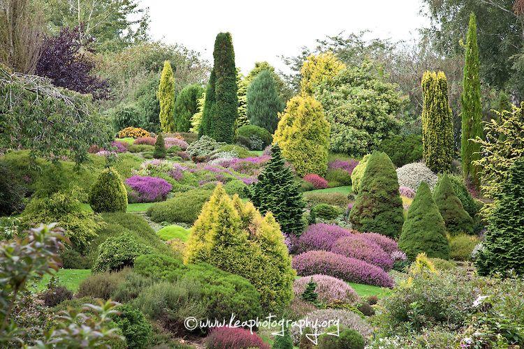 The Real Garden Of Eden Garden Of Eden Kea Photography