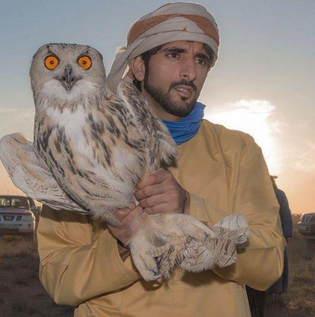 Como Es La Vida Del Principe Heredero De Dubai En 40 Imagenes
