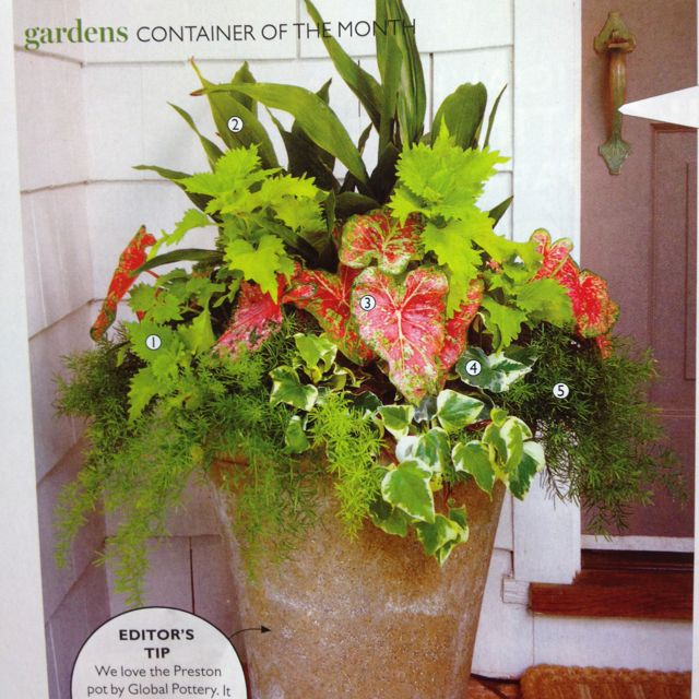 August Southern Living Issue Of Great Outdoor P*T 640 x 480