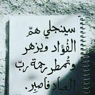 صور عن الصبر Wisdom Quotes Arabic Quotes Sweet Words