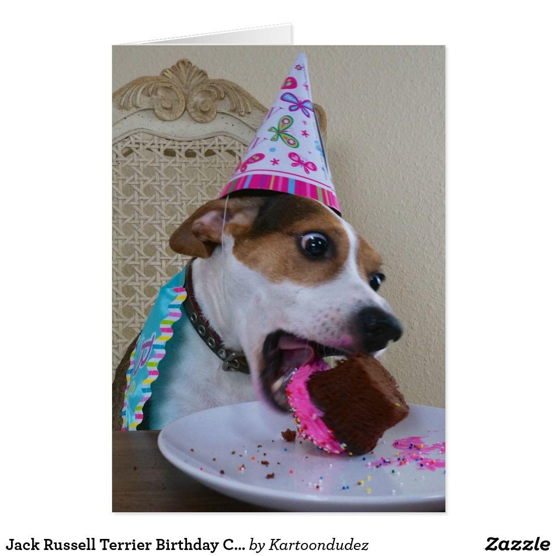 Jack Russell Terrier Birthday Card Jack Terrier Jack Russell Rat Terrier Dogs