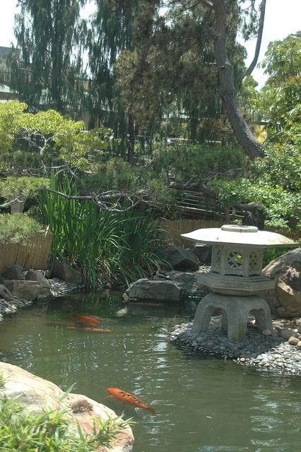 Dsc 1652 Japanese Garden Design Japanese Garden Asian Garden