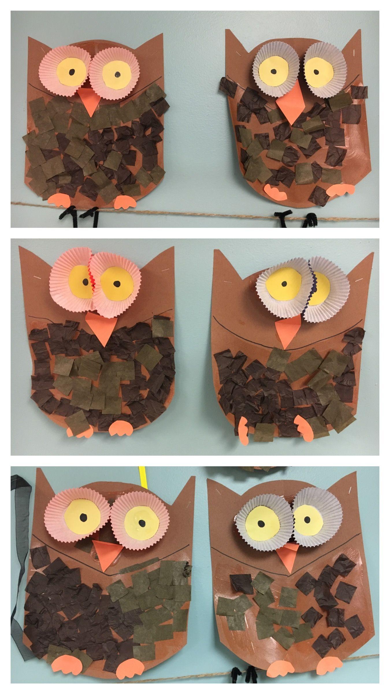 Owl Craft Nocturnal Animals Craft Preschool Owl Art