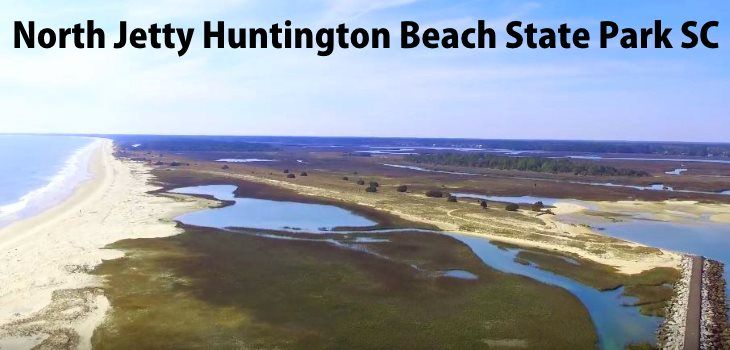 Huntington Beach State Park Sc
