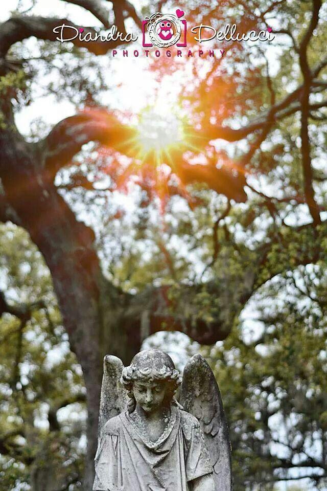 Magnolia Cemetery, angel headstone Photo by Diandra Dellucci photography