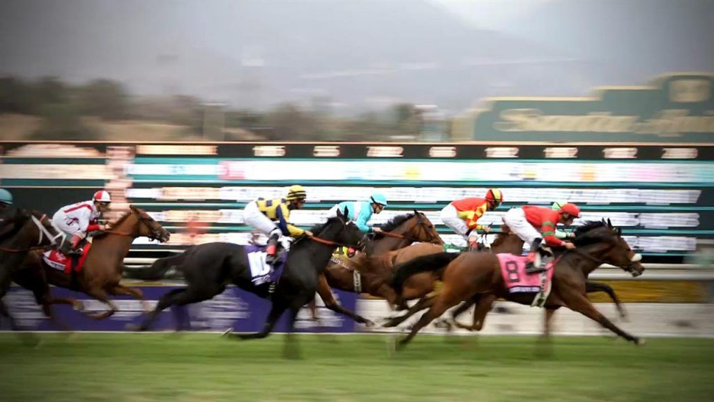 Breeders cup betting scandal my cafe bet on ron
