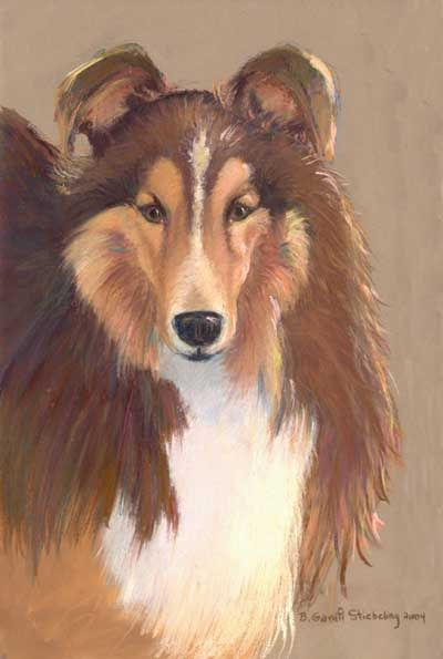 Northeast Ohio Shetland Sheepdog Rescuehttp Www Neossr Org Rock Art Shetland Sheepdog Rock Painting Art