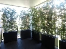 Pin By Fauxtreesnshrubs Artificia On Backyard Privacy Privacy Screen Plants Privacy Plants Balcony Privacy Plants