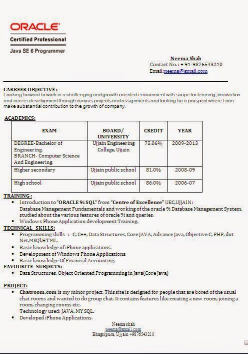 een cv Sample Template Example ofExcellent Curriculum Vitae - resume and cv examples