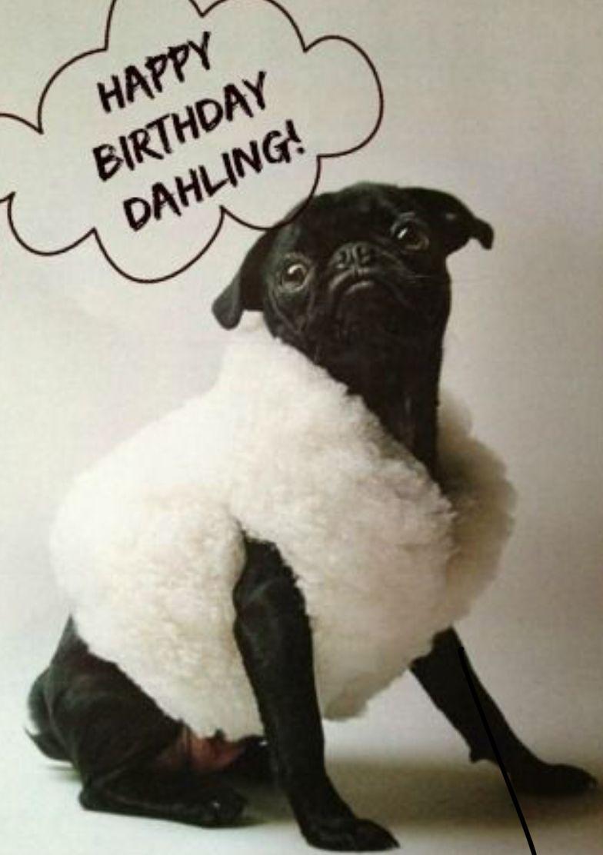 Geburtstagswunsche Vorgesetzte Geburtstagsspruche Fur Den Chef