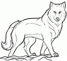 Image Result For How To Draw A Wolf Face Cizimler Hayvan Cizim