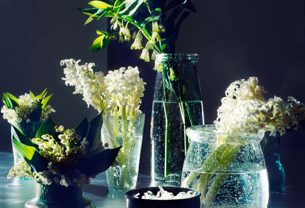 Shane Connolly and & Company | Londons event Florist | Weddings ...