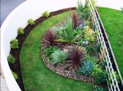Andrea 39 s garden 39 semi circular bed and structural for Structural plants for small gardens