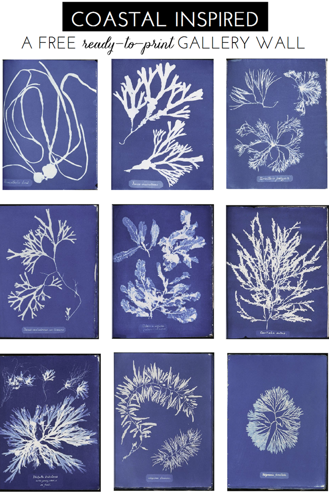 A Free Ready To Print Gallery Wall Blue And White Summer Coastal Sea Life