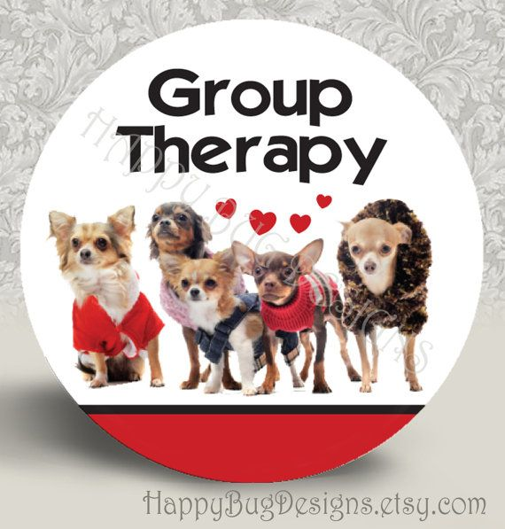 """Group Therapy Chihuahuas 2 Pocket Mirror or Magnet - Buy 2 Get One FREE 2-1/4"""" 2.25"""" on Etsy, $3.50"""