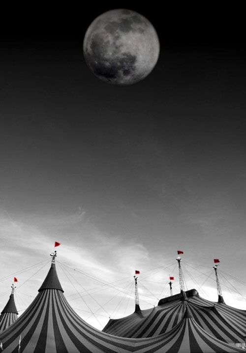 Dark circus & Pinterest Pages | Night circus Google images and Big top