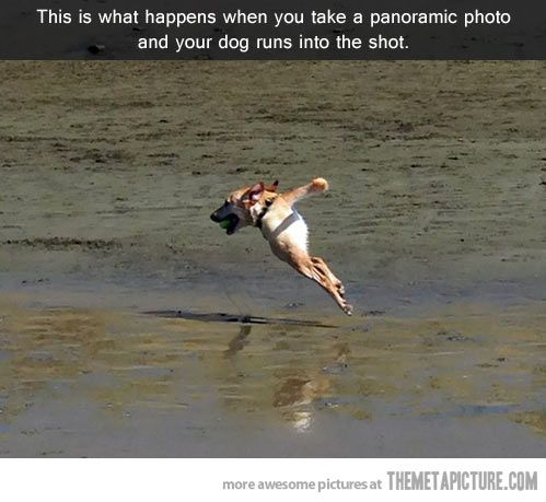 6939a74eed780517047440ff21cb33a4 - 30+ how to take funny panoramic photos