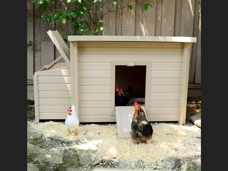 Give your chooks a little taste of luxury with this American-designed, ecoFLEX™ chicken coop. This stylish coop will comfortably house up to 4 chickens and is the perfect size for the typical Kiwi household.   Unlike traditional wooden coops, this one is