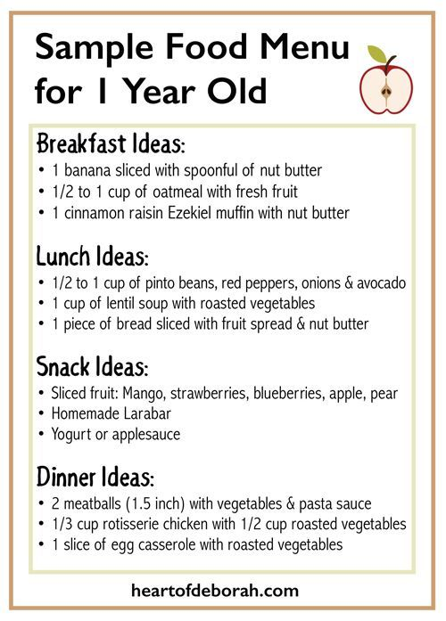 Sample Menu for One Year Old | Best Tips to Feed babies and