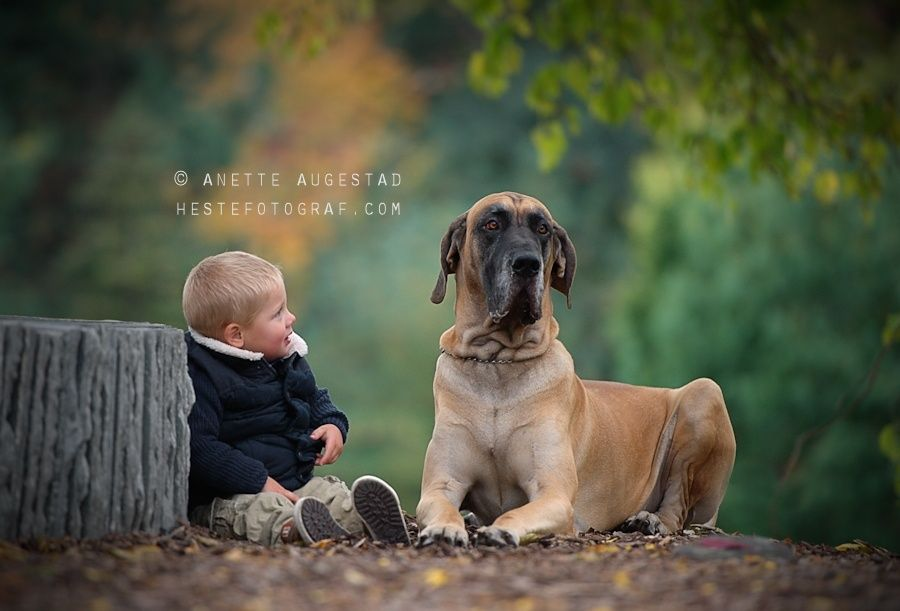 Moments by Anette Augestad on 500px