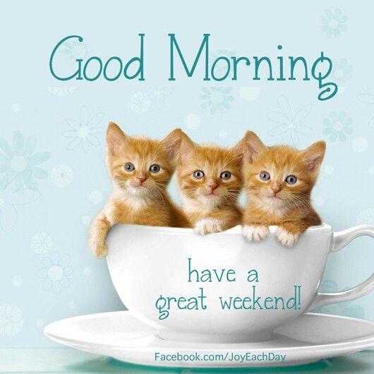 Cute good morning quotes Facebook. Com / Joy Each Day