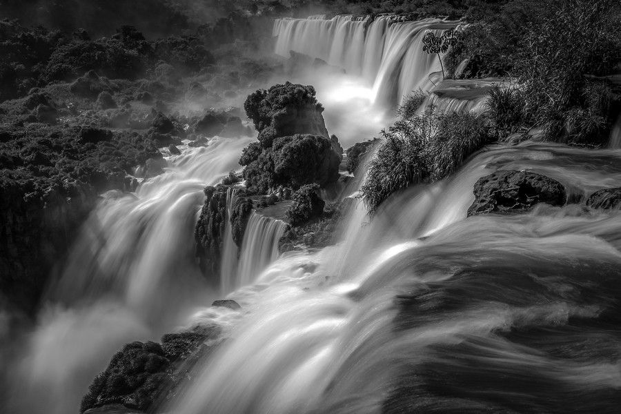 The Flow by Wave Faber