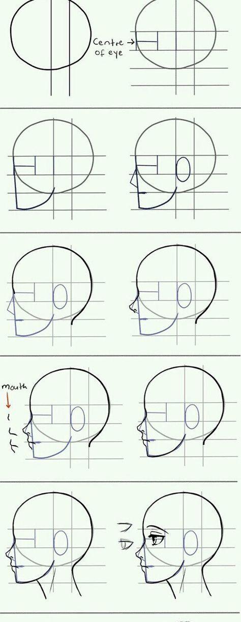Anatomia della testa di riferimento del disegno super 33 idee Anatomia della testa di riferimento del disegno super 33 idee -  -