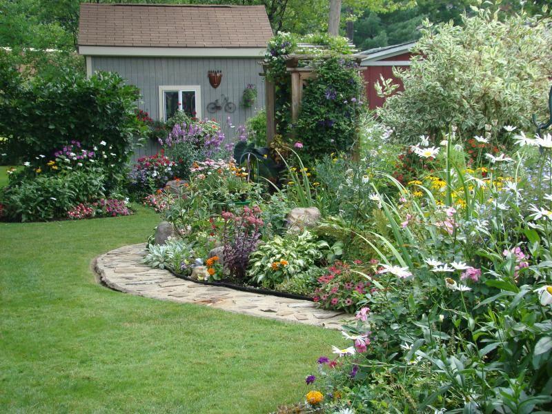 side of yard. perennial