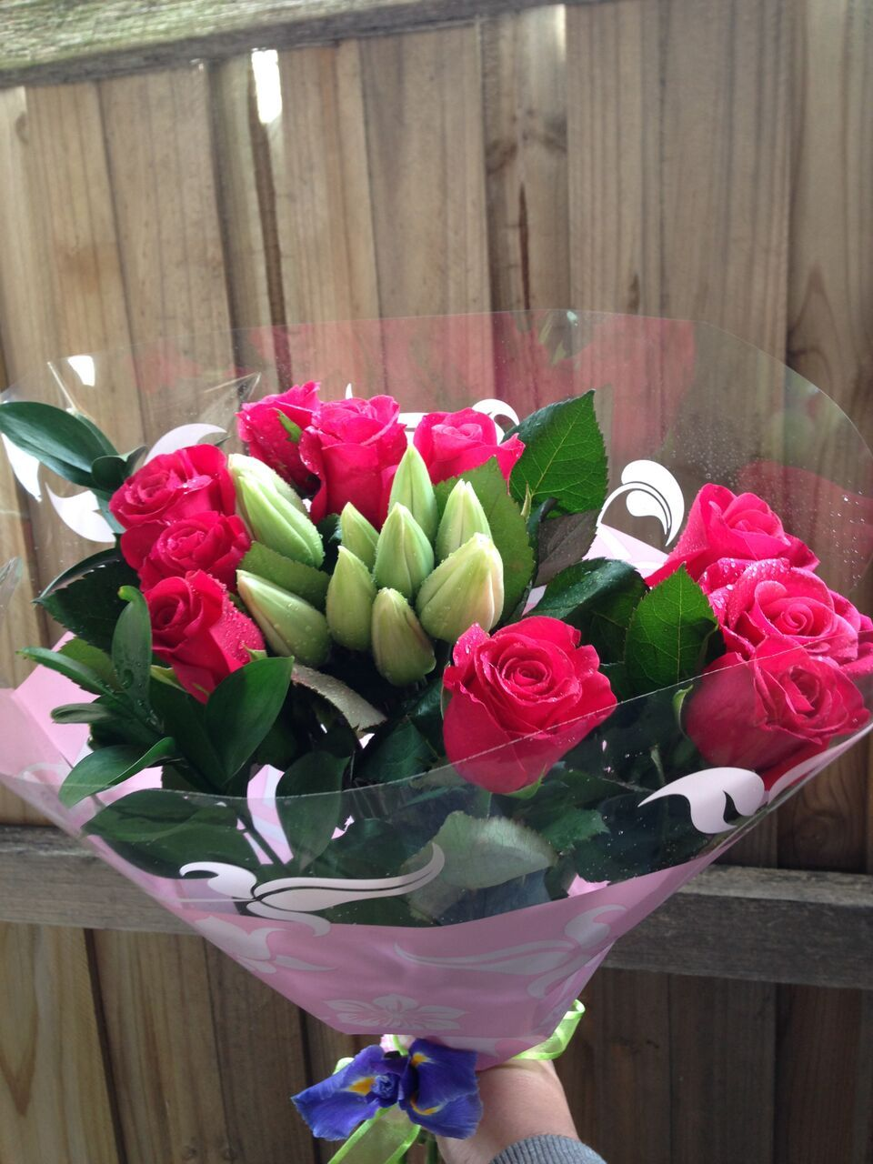 Melbourne fresh flowers have a beautiful range of christmas flowers flower izmirmasajfo