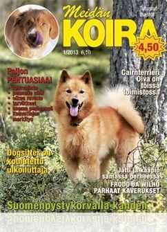 Meidän Koira lehdet! Saa olla vanhempiakin kunhan on luettavassa kunnossa.