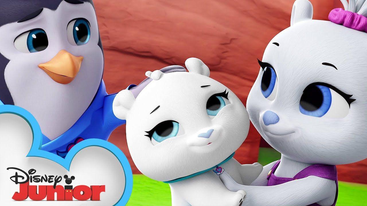 Oh Polar Brother Where Art Thou National Polar Bear Day T O T S Disney Junior Youtube Brother Where Art Thou Disney Junior Disney [ jpg ]