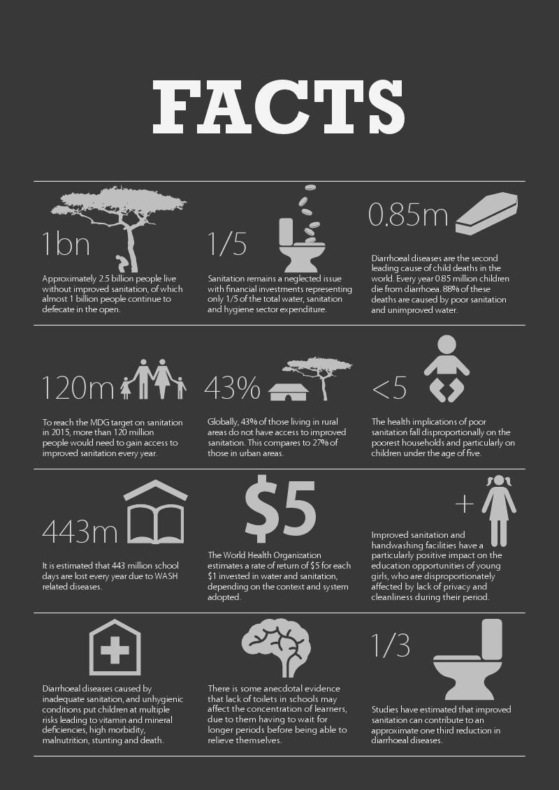 General Facts About Sanitation Health Infographics Design Facts