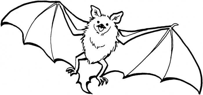 Pin By Brittany Tucker On Project 1 Comm Des Bat Coloring