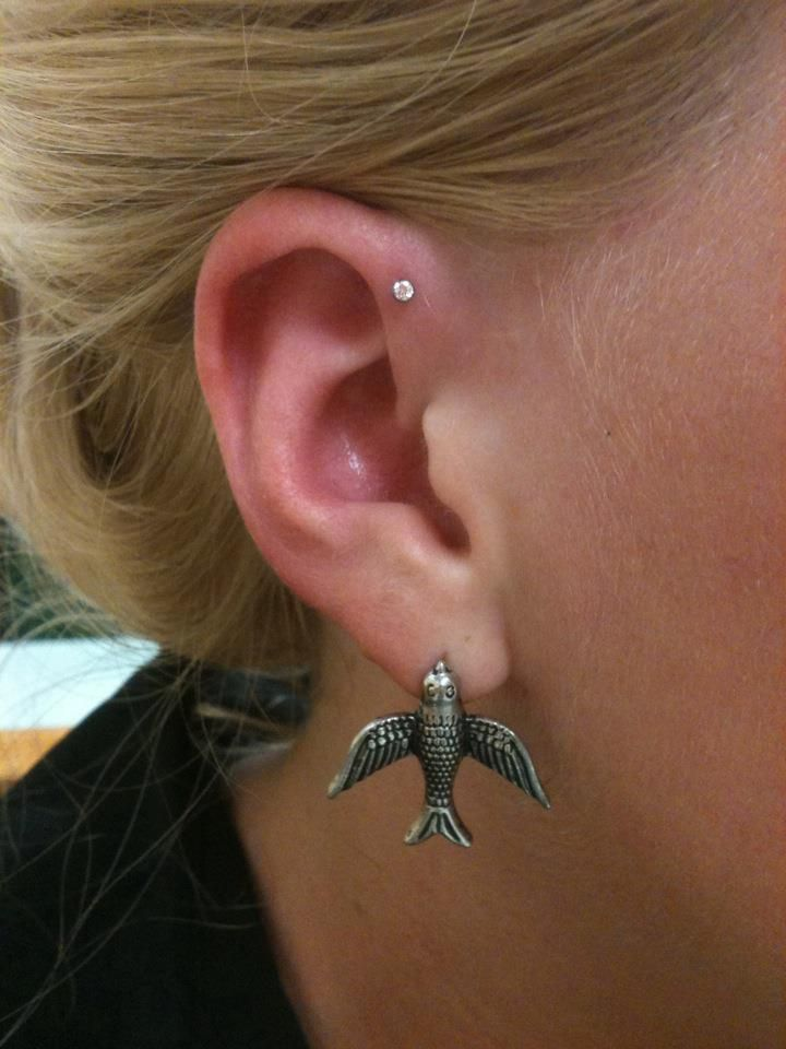 I Love The Upper Cartilage Piercing And I Love The Bird Earring