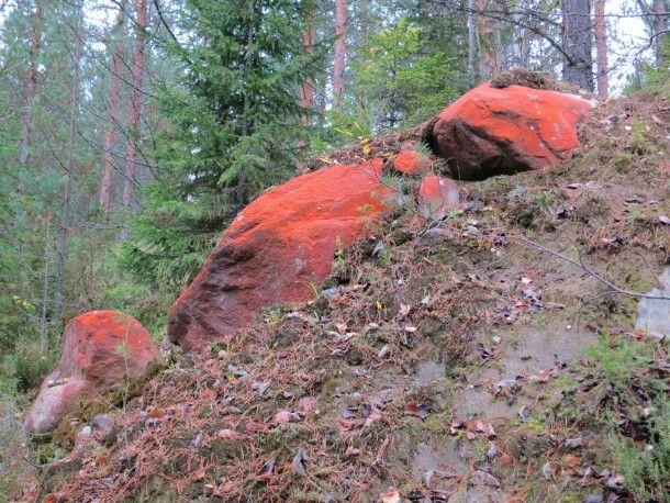 Punaiset kivet | Suomen Luonto