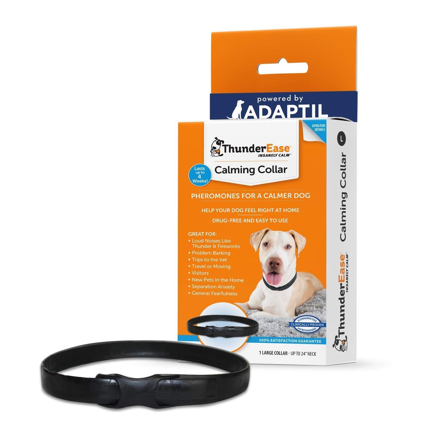 300 Cat Health Supplies Ideas In 2021 Cat Health Pet Supplements Dog Supplements