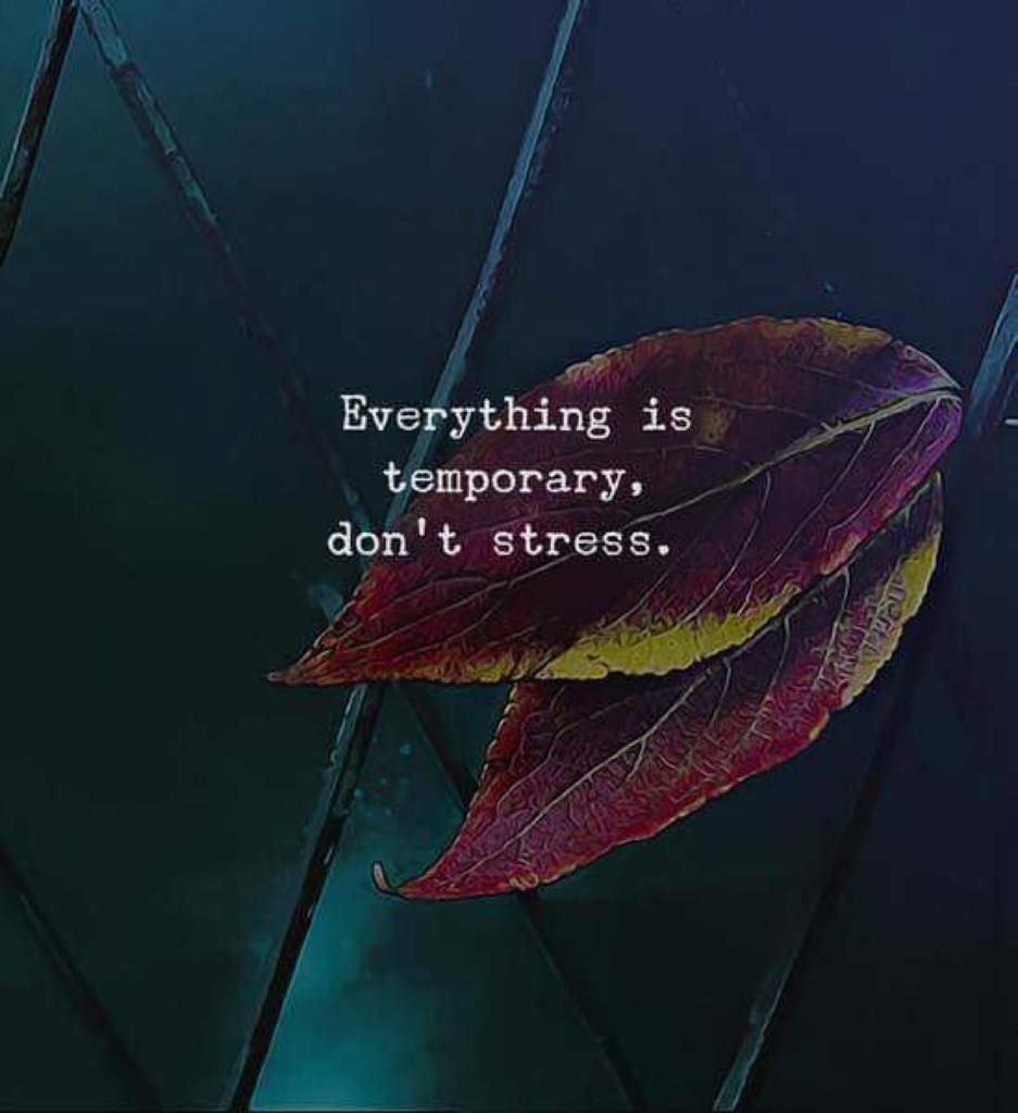 24112018 Everything Is Temporary Dont Stress Quotes