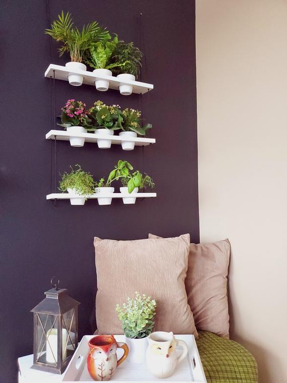Planter Shelves, Indoor Herb Garden, Hanging Herb Garden Shelves, Bay Window Plant Shelf, Vertical P