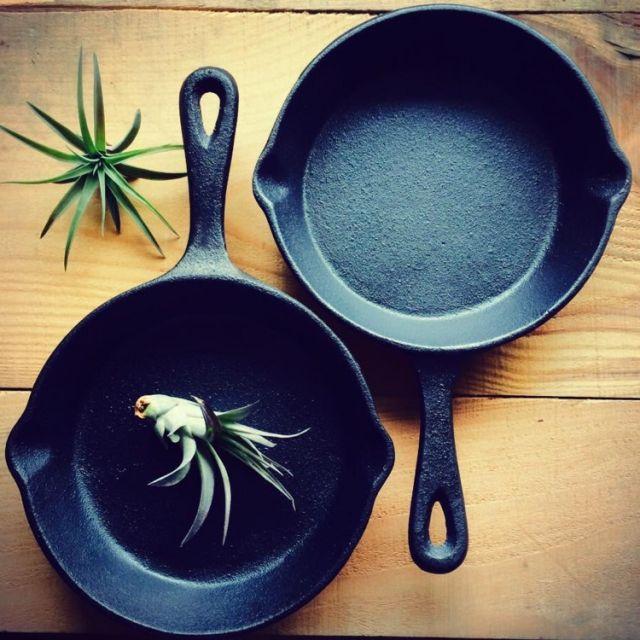 Kitchen/観葉植物/植物/ニトリ/エアプランツ/りんご箱/スキレット/NO GREEN NO LIFEについてのインテリア実例。  (2015-03-25 13:51:06に共有されました)