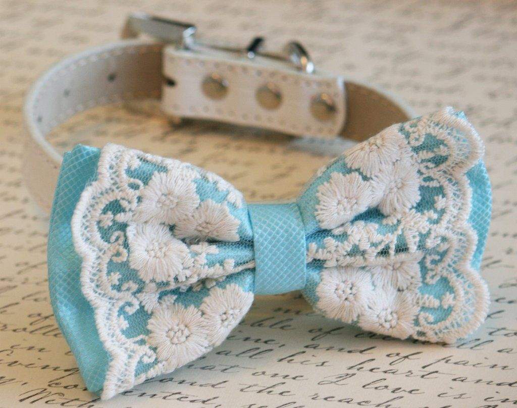 Beach wedding idea  Aqua Blue Dog Bow Tie Beach wedding Pet wedding Victorian wedding
