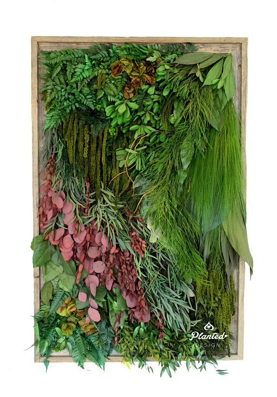 27.5w x 43.5h Plant Painting with Real Preserved