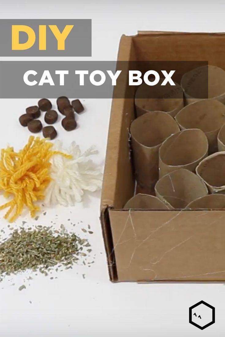 DIY Katzenspielzeug Puzzle Box  Cat Lovers