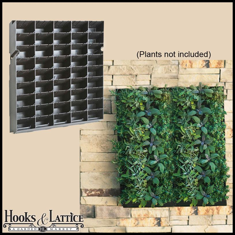 Living Wall Planter With Mounting Bracket 20 W X 20 H Living Wall Planter Living Wall Diy Wall Planter