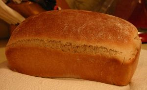 Honey Whole Wheat Bread - Using half white and half wheat flour, this recipe is a great way to start introducing whole wheat to your family.