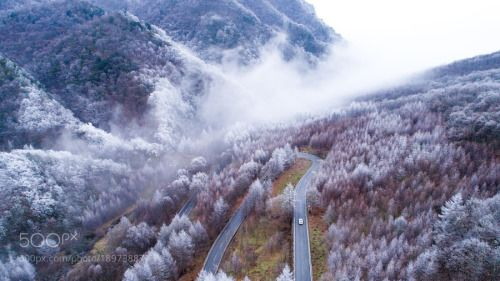 Aerialview of Shennongjia forestry reserve central...  HaoKe