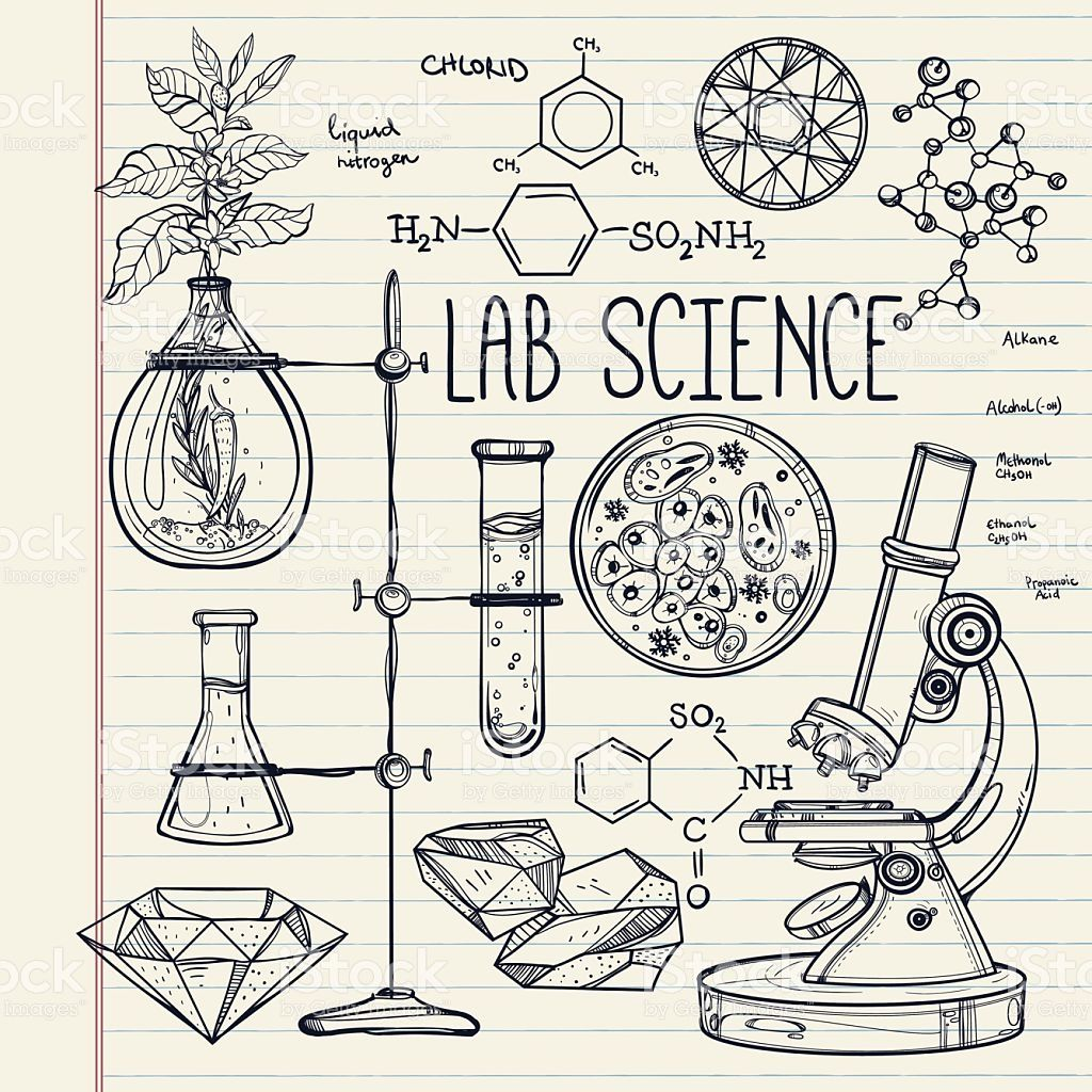 Hand Drawn Science Beautiful Vintage Lab Icons Sketch Set Vector