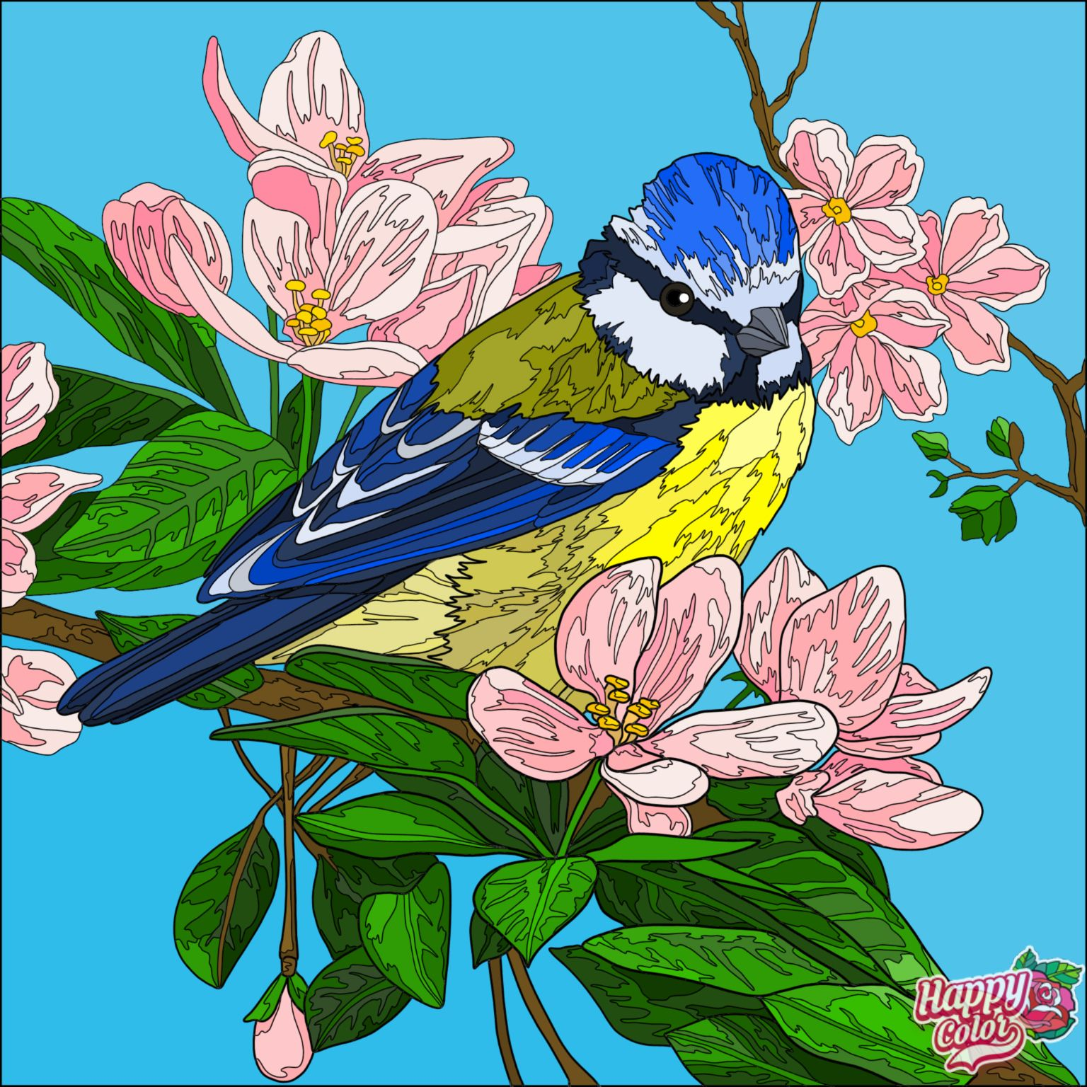 Pin By Gina Ball On Digital Colorscapes Nature Art Painting Bird Drawings Colorful Art